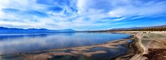 "The Salton Sea (A Work of Mark) Tags: color ""salton sea"" water birds land scenic"