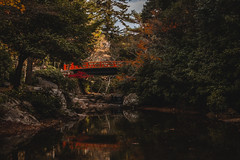 Bridge on Miyajima Island (mb.graphx) Tags: fujifilm xt3 japan bridge autumn fall foliage nature landscape