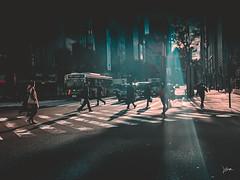 Ginza Rush Hour (miles345) Tags: ginza tokyo japan morning rushhour zebra crossing pedestrian bus shopping japanese autumn shotoniphone iphone iphonexs lightroom lr street streetphoto streetphotography traffic shadow lightray asphalt