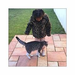 attirance reciproque (Hélène Baudart) Tags: chat fourrure enfant iphone amitiée amour