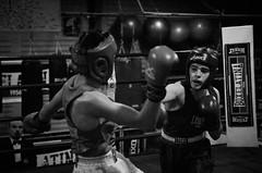 46387 - Hook (Diego Rosato) Tags: boxe boxing pugilato boxelatina ring match incontro nikon d700 tamron 2470mm rawtherapee bianconero blackwhite pungo punch dodge schivata hook gancio