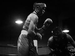 46301 - Dodge (Diego Rosato) Tags: boxe boxing pugilato boxelatina ring match incontro nikon d700 tamron 2470mm rawtherapee bianconero blackwhite pungo punch dodge schivata