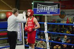 46010 - Count (Diego Rosato) Tags: boxe boxing pugilato boxelatina ring match incontro nikon d700 tamron 2470mm rawtherapee arbitro referee count conteggio
