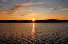 Let the day begin! (Patricia Buddelflink) Tags: sunrise lake nature landscape