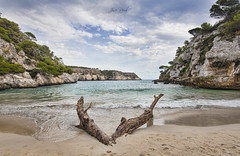 Macarelleta (Jose Peral Merino) Tags: landscape paisaje mediterraneo macarelleta menorca tronco nubes playa cala cielo sky sea mar arboles tree
