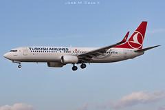 Turkish Airlines B737-8F2 TC-JGT (José M. Deza) Tags: 20191129 b7378f2 bcn boeing elprat lebl planespotting spotter tcjgt aircraft