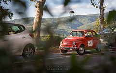 Fiat 500 à travers les feuilles (cedant1) Tags: car oldcar oldtimer fiat fiat500 italy italia europe europa vintage bokeh composition lamp tree cute chianti radda toscane toscany red tuscany road street
