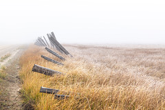 Dominoes (garshna) Tags: fence fenceline frost grasses road dirt fog leaning decaying falling landscape outdoors nikon nikkor