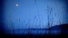 twilight moon (sugarelf) Tags: pacificnorthwest nature fog night december farmland