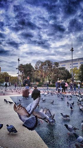 Barcelona. Plaza Cataluña.
