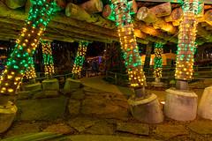 The Gathering Place, Tulsa, OK (Patchman 2, Thanks for 1 million views) Tags: gatheringplace tulsa nikond850 nikon24120mmlens lights