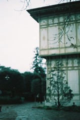 000005 (analogue_y) Tags: analog expiredfilm kodak kodak200 minoltax700 minolta analogcamera analogphotography analogue analogselfie filmphotography filmcamera shootingfilm istillshootfilm filmsnotdead