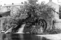 Old water wheel in Moville. (National Library of Ireland on The Commons) Tags: robertfrench williamlawrence lawrencecollection lawrencephotographicstudio thelawrencephotographcollection glassnegative nationallibraryofireland waterwheel moville codonegal headrace beach houses terrace ulster corn mill bredagh river