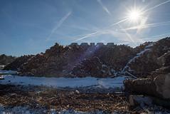 _DSC0131 (Ghostwriter D.) Tags: germany munich nikond600 wood winter