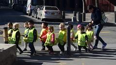Make Way For Ducklings (MPnormaleye) Tags: utata line parade urban manhattan city walking teacher school girls boys kinder children kids prek toddlers