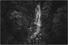 Photo of Fine art black & white, long exposure, view of the highest drop at the Falls of Acharn at Acharn, Perth & Kinross, Scotland. The view affects perspective since the drop shown is over 20 m high.