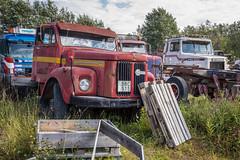 Abandoned Scania trucks (Burminordlicht) Tags: trucks oldtrucks scaniatruck scania retired junktrucks scraptrucks scrapyard junkyard schrottplatz autofriedhof rusty