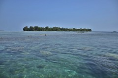 Let's Snorkeling Here (yusuf ks) Tags: serenity beach pantai seascape beautifulbeach bluebeach clearwater snorkeling letssnorkelinghere island pulau landscape nature alam clouds awan sky langit boat thousandislands pulauseribu hopeisland pulauharapan jakarta indonesia