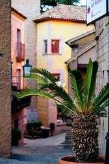 South_Europe_Street (uhtyjejik) Tags: barcelona spain france monaco montserrat