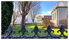 A Peek over the fence (Timothy Valentine) Tags: 1219 large camera2 friday 2019 fence stonington connecticut unitedstatesofamerica