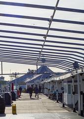 Brighton Palace Pier (grahambrown1965) Tags: olympusepl9 olympusm40150mmf4056r olympus pen olympuspen pier brightonpier brightonpalacepier seagull seagulls gull gulls bird birds brighton eastsussex