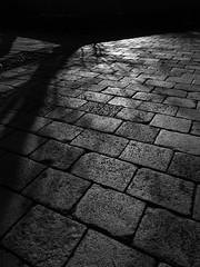 Stone texture 6 (Daisuke Ichikawa) Tags: stone texture cobblestone sunlight shadow monochrome monotone blackandwhite bw japan olympus