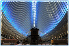 CHRISTMAS AT THE OCULUS. NEW YORK CITY. (Alberto Cervantes Photography.) Tags: oculus christmasoculus christmas arquitectura architecture reloj clock time usa nyc wtc oculusworldtradecenter worldtradecenter streetphotography photography photoart art creative photoborder indoor outdoor blur lowermanhattan lower manhattan luz light color colores colors brillo bright brightcolors lightblue blue freedomtower torre tower freedom nightcolor tree people building retrato portrait sombra shadow