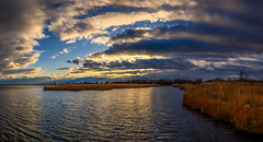 Sunset Bay (djrocks66) Tags: sunrise nature waterscape waterscapes swans swan outdoors bay water ocean harbor canal clouds sky color golden boats fishing longisland ny nikon z6 iloveny sunset reflections sun sunlight sunrays rays puddle landscape landscapes nikonusa