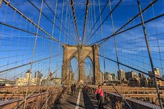 View of Brooklyn (mysterious-man) Tags: brooklyn bridge newyork brücke häuser usa himmel sky blue blau