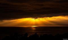 Shinning through (technodean2000) Tags: nikon d810 lightroom photographer technodean2000 lr ps photoshop nik collection flick photo flickr wwwflickrcomphotostechnodean2000 www500pxcomtechnodean2000 coast sunset sea silhouette glow sun light bristol channel river severn
