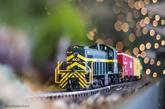 JMC_2079trainedge1jsm (JayEssEmm) Tags: tower hill botanic garden boylston massachusetts christmas holiday lights model train