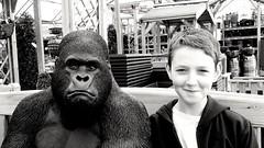 """WILD....I WAS LIVID!!!!""..... (markwilkins64) Tags: portrait portraiture ape smile smirk humour markwilkins stare blackandwhite monochrome mono bw eyecontact grumpy"