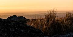 As the sun goes down over Dartmoor - NK2_8873 (Jean Fry) Tags: dartmoor dartmoornationalpark devon englanduk goldenhour leedentor moorland uk westcountry grasses layers rocks sundown tors
