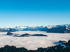Auf dem Pilatus (oonaolivia) Tags: pilatus drachenberg schweiz switzerland nature landschaft landscape nebel nebelmeer fog seaoffog berge mountains