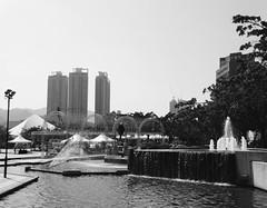 Sha Tin Park, Hong Kong (Miranda Ruiter) Tags: shatin hongkong streetphotography photography blackandwhite shatinpark park