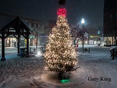 Footprints around the tree (Gary/-King) Tags: 2019 brattleboro december vermont night snow