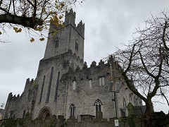 Saint Mary's Cathedral - King's Island - Limerick City (firehouse.ie) Tags: medieval stmary's houseofgod christian churches premises building winter churcheschristian church cathedrals saintmary'scathedral stmary'scathedral limerickcity ireland eire historic limerick king'sisland cathedral buildings architecture