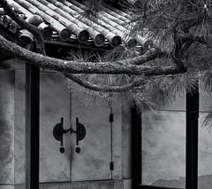 Nijo building and pine branch (Tim Ravenscroft) Tags: nijo pine branch architecture roof japanese japan kyoto monochrome blackandwhite blackwhite