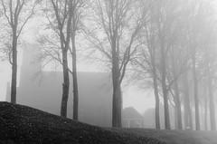 (Sietske de Graaf) Tags: mist fall autumn fog sloten friesland nederland netherlands pentax pentaxk50 monochrome bw blackandwhite smcpentaxda35mmf24al 35mm
