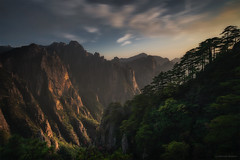 Trees of Wisdom (nicointhebus (nicolas monnot)) Tags: asia china chine anhuy huangshan tree yellowmountain nature landscape mountain mountains sunset silhouette sony sonyalpha gitzo