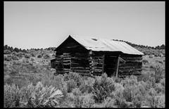 The Cabin (greenschist) Tags: usa ferraniap30 zeissplanar50mmf2tzm zeissikonzm rangefinder nevada analog 35mm film manhattan