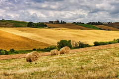Solo nella campagna - Only in the countryside (Eugenio GV Costa) Tags: approvato campagna orciano pisano italy italia pisa toscana tuscany countryside outside campo field fieno hay cielo nuvole sky cloud