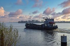 Geesthacht Werftplatz Lachs 05019040 (Wolfgang Schrade) Tags: barge motorklapprahm lachs 0509040 elbe fluss river binnenschiff schiff