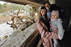 Nikolaustag (Michael Döring) Tags: gelsenkirchen bismarck zoomerlebniswelt zoo winterspecial nikolaus rentiere afs815mm3545efisheye d850 michaeldöring