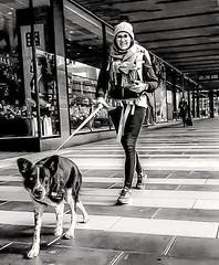 walk the dog.. (LeifEureniusPhotogrpahy) Tags: streetstyle streetphotographer streetarteverywhere streetportrait streetphotographystreet streetlife streetphoto streetartistry streetphotography street streetphotographers bnw monochromatic monochrome mono