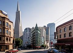 North Beach San Francisco California (randyandy101) Tags: sanfrancisco california usa littleitaly columbus avenue transamericabuilding transamericapyramidbuilding coppolabuilding northbeach