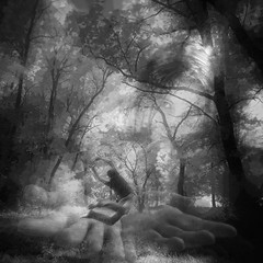 forest tale (Laszlo2019) Tags: background infrared filtereffects layers composite digital art credit deviantart link