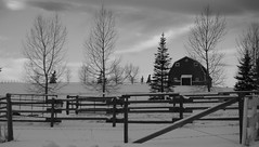 Old Homestead .. (Mr. Happy Face - Peace :)) Tags: autumn weather wintery art2019 canada landscape scenery alberta cans2s bw white black nwn