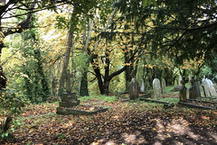 Quiet Corner (RobW_) Tags: bucolic graves stmarys church chilham kent england tuesday 05nov2019 november 2019