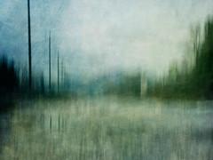 (Brigitte Aeberhard) Tags: abstrakt abstract icm intentionalcameramovement painterly kreativ creative